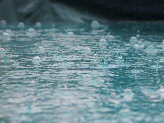flytte, regn, beskyttelse, papkasse, raja pack